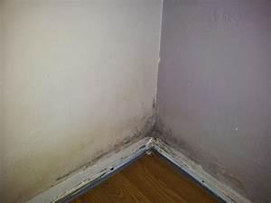 Probleme D Humidite Mur Interieur : prob me humidit mur chambre ~ Melissatoandfro.com Idées de Décoration