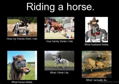 Gay Horse Meme - horse memes the horse forum