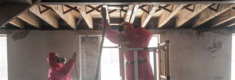 cleaning  asbestos removal