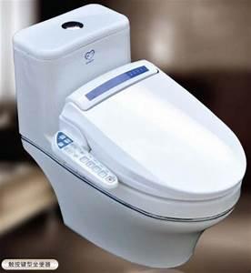 Bidet Toilette Kombination : toilet bidet combo roselawnlutheran ~ Michelbontemps.com Haus und Dekorationen