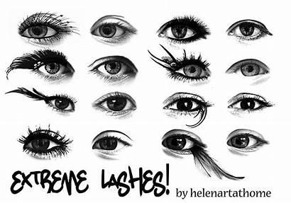 Photoshop Brushes Lashes Eyelash Brush Extreme Eyelashes