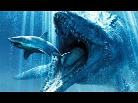 gigantic megalodon shark proofevidence  worlds