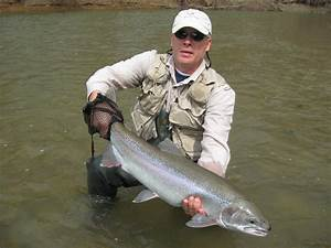 PA, OHio Steelhead Guides - Fly Fishing Reports, fly tying ...