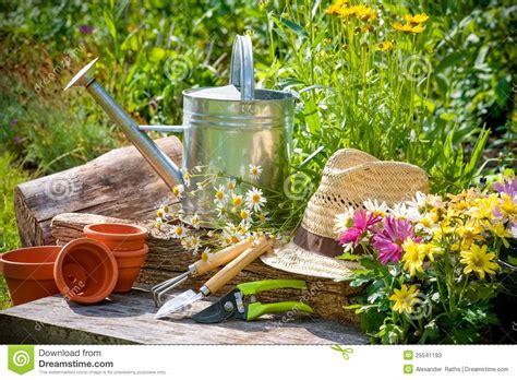 the of gardening gardening stock photos image 25541193