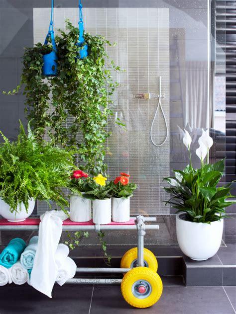 Pflanzen Im Badezimmer by Ein Eigenes Spa Durch Pflanzen Im Badezimmer Pflanzenfreude