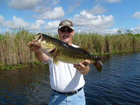 bass fishing florida south peacock reports pdf chuck