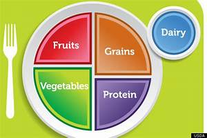 Usda Food Pyramid Out  Is The New Food Plate Better