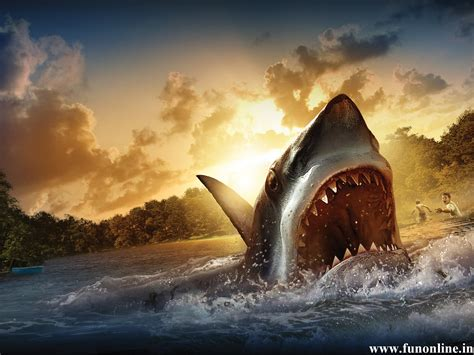 Shark Animated Wallpaper - moving shark wallpaper wallpapersafari