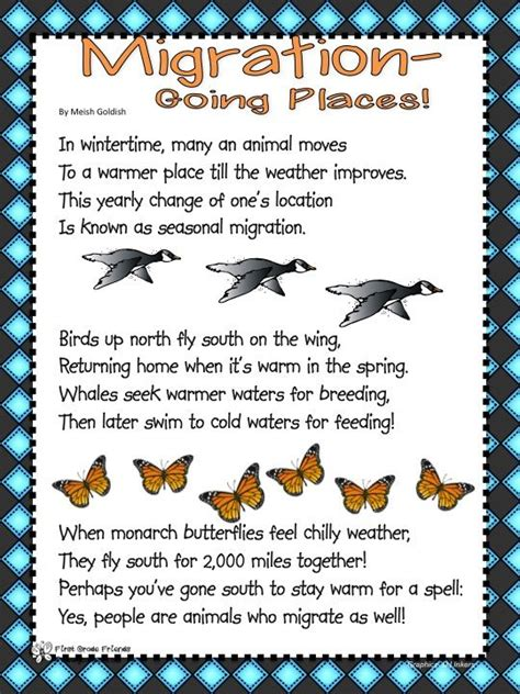 bird migration worksheets search education
