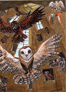 Owlery  U2013 The Harry Potter Lexicon