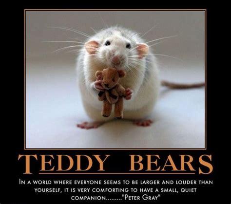 Bears Meme - teddy bear memes image memes at relatably com