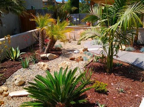 Backyard Desert Landscape Designs by Desert Landscaping Ideas To Make Your Backyard Look