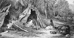 Jäger und Sammler und ihre Umwelt