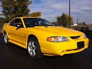 Not so mellow yellow: '98 Ford Mustang SVT Cobra | Mint2Me