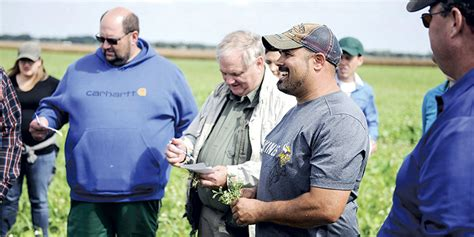 cover crops heading adams austin daily herald austin daily