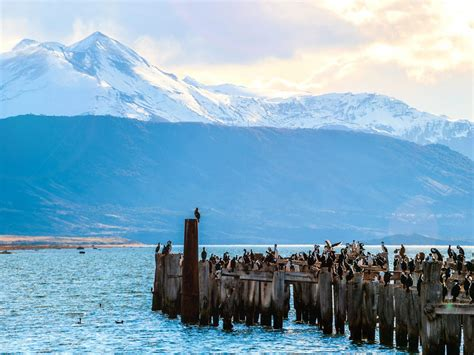 Santiago Chilean Wine Country And Patagonia Visit Some Of