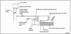 P0442 2004 Infiniti G35 Evap Control System Leak Detected
