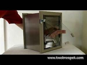 hale pet door hale wall mounted pet door youtube With wall mounted dog doors best one