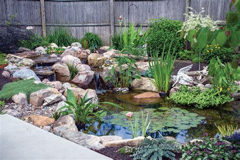 remember plant shelves  effective pond planning pond