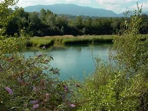 Delta Savoie : r serve naturelle du delta de la dranse savoie mont blanc savoie et haute savoie alpes ~ Gottalentnigeria.com Avis de Voitures