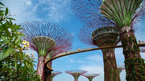 singapore gardens by the bay gardens by the bay in singapore expedia ca