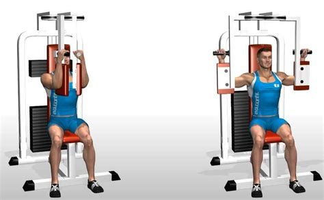 pec deck fly benefits free weights vs machines machine exercise alternatives