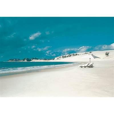 Bazaruto Archipelago - Bird Watching Luxury Hotels