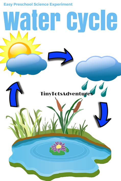 water cycle preschool clipart water cycle 101 clip 254