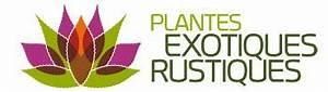 Plantes Exotiques Rustiques : pittosporum tobira 39 nana 39 plantes exotiques rustiques ~ Melissatoandfro.com Idées de Décoration