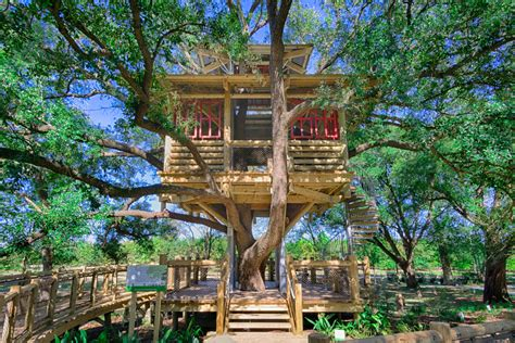 Treehouse Park Receives Special Recognition Bridgeland