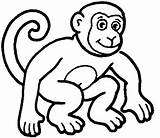 Monkey Coloring Pages Baby Animal Colouring Monkeys Cartoon Sheets Sheet Animals Colour Printable Clip Outline Simple Face Drawing Zoo sketch template