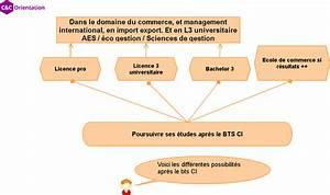 Apres Un Bac Es : bts commerce international acc s programme que faire apr s ~ Maxctalentgroup.com Avis de Voitures