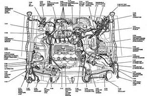 similiar 91 ford explorer wiring diagram keywords ford explorer vacuum modulator on 91 ford explorer 4 0 engine diagram
