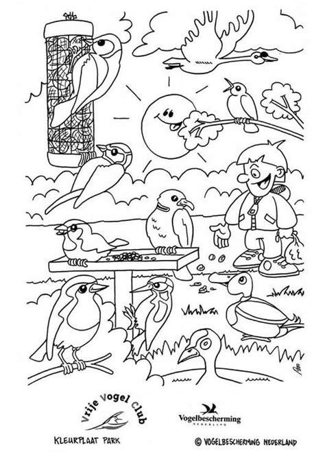 Kleurplaat Vogels In De Winter by Vogels In Het Park Zvierat 225 V Zime Kleurplaten Vogels