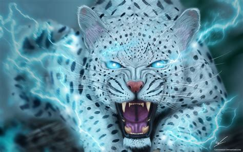 Animal Magic Wallpaper - artwork cat animal magic wallpaper 3840x2400