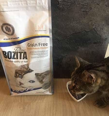 bozita katzenfutter test erfahrungen  mein