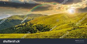 Panoramic Summer Landscape Few Trees On Stock Photo ...