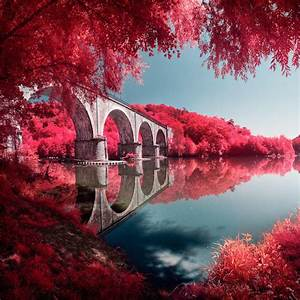 Infrared Lens Filter That Mimics The Look Of Kodak Aerochrome Film