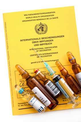 Wie Oft Sticht Eine Mücke Pro Nacht by Notwendige Schutzimpfungen Visa Und Beachtenswertes F 252 R