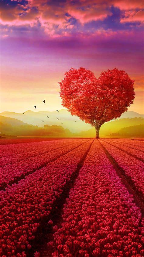 love heart shape tree flowers   ultra hd mobile
