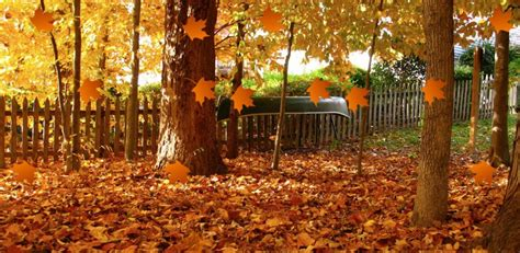 Falling Leaves Wallpaper Animated - falling leaves animation