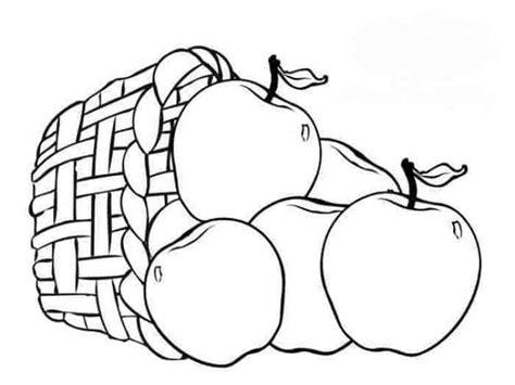 17 gambar sketsa buah buahan beserta penjelasan lengkap