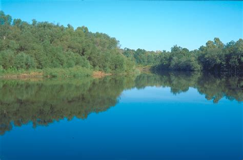 adaptive management  environmental flow restoration