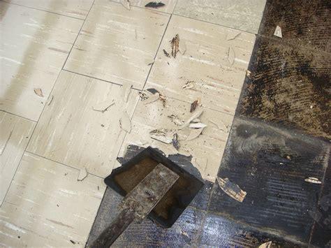 removal asbestos floor tile floor tile ideas asbestos