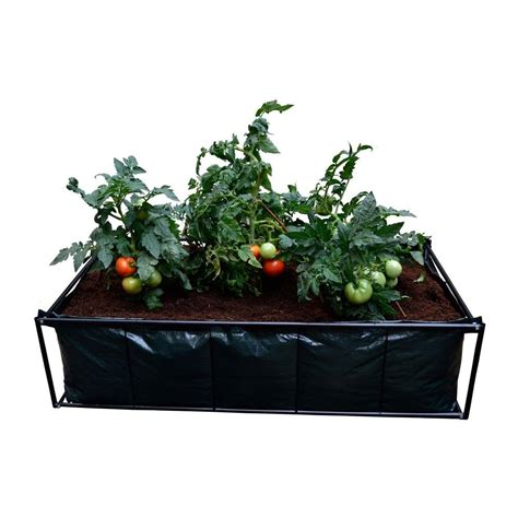 tomato planter viagrow tomato planter raised bed garden with coir coco growing media v309928coir the home depot