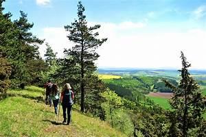 Route Berechnen Falk : landhotel zur gr nen kutte urnshausen th ringen ~ Themetempest.com Abrechnung