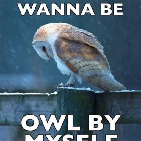 Sad Memes - sad quotes about loneliness memes