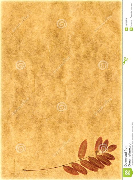Vintage Paper With Plants Royalty Free Stock Photos. Resume Definition In Computer. Letter Of Intent Example Grant. Cover Letter Junior Administrative Assistant. Curriculum Vitae Zimbabwe. Letter Format Left Justified. Cover Letter For Internship In Bank. Cover Letter Apply Kerja. Curriculum Vitae Pdf Compilabile