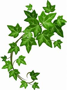 Green Pantry | Homepage