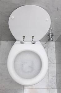 Fuite D Eau Wc : que faire en cas de fuite d un wc bricolage blog ~ Premium-room.com Idées de Décoration